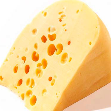 swiss cheese1 web